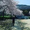 벚꽃 구경이나 가볼까?