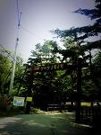 [군립공원] 천마산 2010.05.20