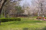 안산 석수골공원