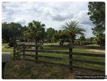 평범한 플로리다 시골 풍경