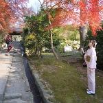 일본 여행 풍경