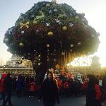 메리크리스마스 - 에버랜드에서 즐기는 2015년 크리스마스