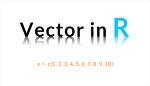 [R프로그래밍] 벡터의 의미와 벡터 관련 함수
