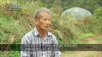 tv조선 농업 미래를 품다