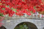 경주 가을여행, 꼭 가야할 단풍이 아름다운 5곳