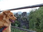 [독일-체코-브라티슬라바 로드트립] 관광객이 가는 작센-스위스 국립공원과 등산객이 가는 작센-스위스 국립공원