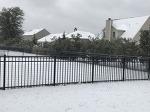 사우스 캐롤라이나 블러프턴에 눈이 오면 생기는 일