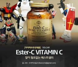 아이허브 추천 솔가 에스터 C, 비타민 C와 뭐가 다를까?
