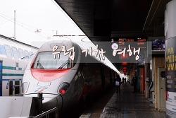 유럽여행준비] 기차노선 및 도시간 이동소요시간 런던 파리 스트라스부르 루체른 베른 인터라켄 베네치아 로마 이동방법 기차이동루트 역이름