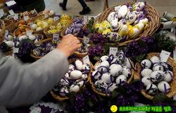 정성이 가득한 부활절 선물, 진짜 달걀 꽃그림