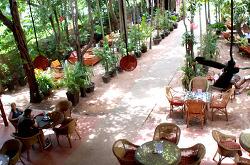 캄보디아 PEACE CAFE - 착한먹거리와 베품을 위한 소비를 지향하다