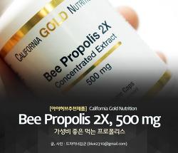 아이허브 프로폴리스 캡슐, 면역력 강화와 비염에 좋은 비 프로폴리스 2X
