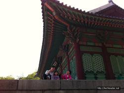 경희궁 & 서울역사박물관 :: 아이들과 역사 공부도 하고 조선 궁궐 나들이도 할 수 있는 곳