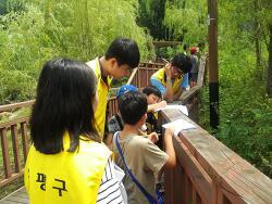 [활동] 은평청소년기획봉사단 '청나무