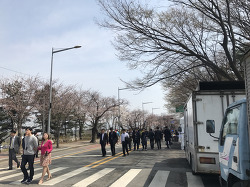 2017.04.07 여의도 윤중로 국회의사당 벚꽃