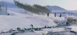 삼포 가는 길-(2)궁극의 안식처를 향한, 우리 모두의 여정..