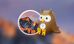 맥용 트위터 앱 'Night Owl' 업데이트... 비-맥 앱스토어 버전은 수동 업데이트