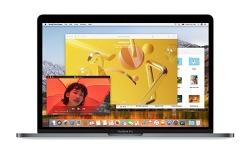 애플, 두 번째 macOS 하이 시에라 개발자 베타 배포