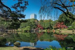 신주쿠교엔 (新宿御苑 )