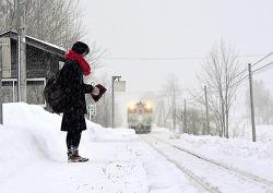일본의 한 사람을 위한 기차역에 투영된 천민 자본주의 한국