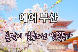 에어부산 봄맞이 일본노선 벚꽃특가