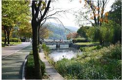 가을, 분당 율동공원을 걷다.[상편]