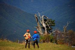 가을산, 덕유산 향적봉, 단풍구경