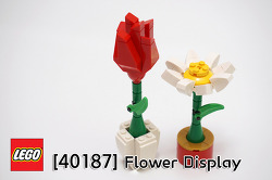 [40187] Flower Display