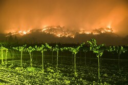 나파 밸리의 화재