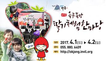 [하동 축제] 제3회 옥종북방 딸기체험한마당
