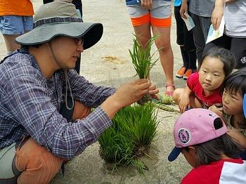 갯마을 주민과 함께하는 어린이 습지레인저-시민과 함께하는 농사체험