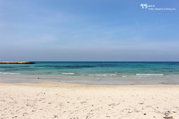 [제주] 오감을 깨우는 아름다운 바다 ::월정리해변