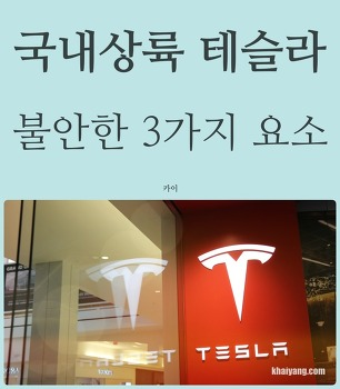 한국 입성 테슬라, 성공이 쉽지 않은 3가지 이유