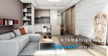 6.19 부동산 대책 이후 소형아파트 인기 급상승!