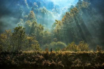 [소니 프로 포토그래퍼 인터뷰] 신비로운 자연의 모습을 담는 풍경사진 작가 박흥순 포토그래퍼