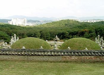 현종, 숭릉, 외국에서 출생한 유일한 왕