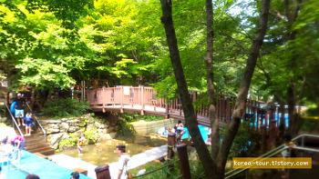 [대전여행-상소동산림욕장]물놀이장~으~으으 추워
