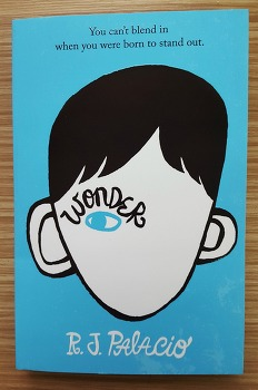 [추천도서 : 남녀노소 꼭 읽어야할 책 소설] R.J. Palacio 저서 '원더 Wonder' : 읽기 쉬운 영어 소설책, 영어 원서 추천