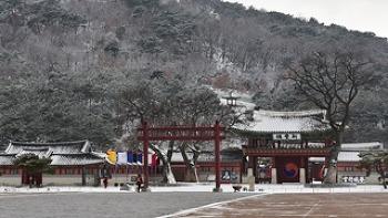 눈이 오면 더욱 아름다운 수원시 겨울 명소!