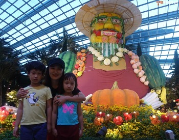 플라워돔 & 클라우드돔 싱가포르 마리나베이샌즈 볼 거리