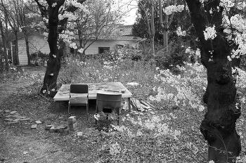 대구 with Leica M4, 35mm f/2.0 summicron asph