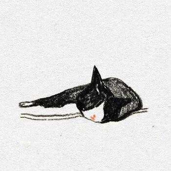 고양이 색연필 일러스트