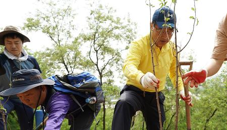 효성캐피탈 창립 20주년 기념, 난지도 하늘공원 푸른 숲 조성