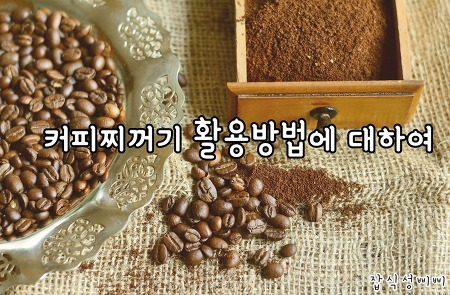 커피찌꺼기 활용방법에 대하여!