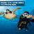 [취미존중] 지구의 100% 여행하다! 스킨스쿠버다이빙 동호회