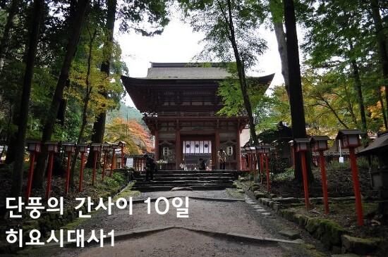 단풍의 간사이 - 10일 오쓰8 (히요시대사日吉大社1)