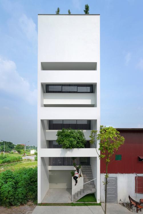 *도시 속, 자연을 집 안으로 조화시킨 베트남 주택-[ Nguyen Khac Phuoc Architects  ] A House in Trees