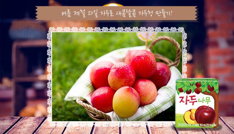 [레피시] 여름 제철 과일 자두로 새콤달콤 자두..