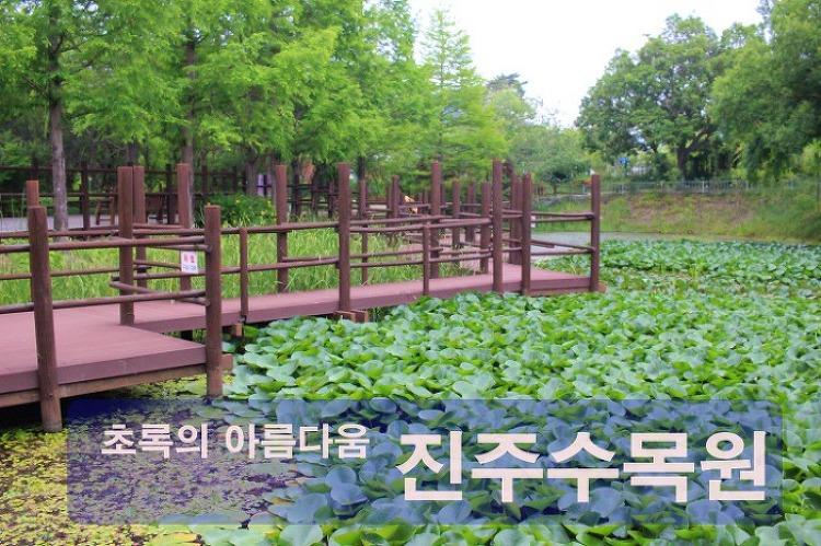 초록의 아름다움, 산책하기 좋은 진주 수목원