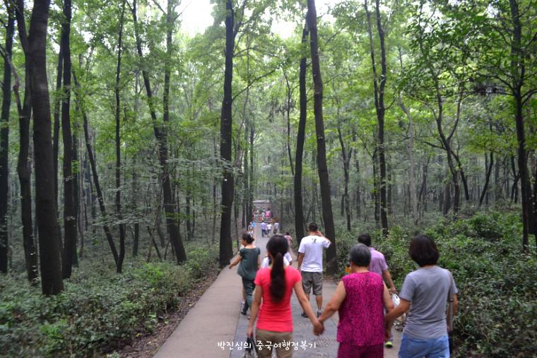 ▲ 중산릉으로 가는 도보. 옆에는 관광차만 다니는 길이 따로 있었다.